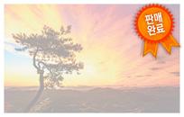 일출과 소나무 확대보기 - 새창으로 열림